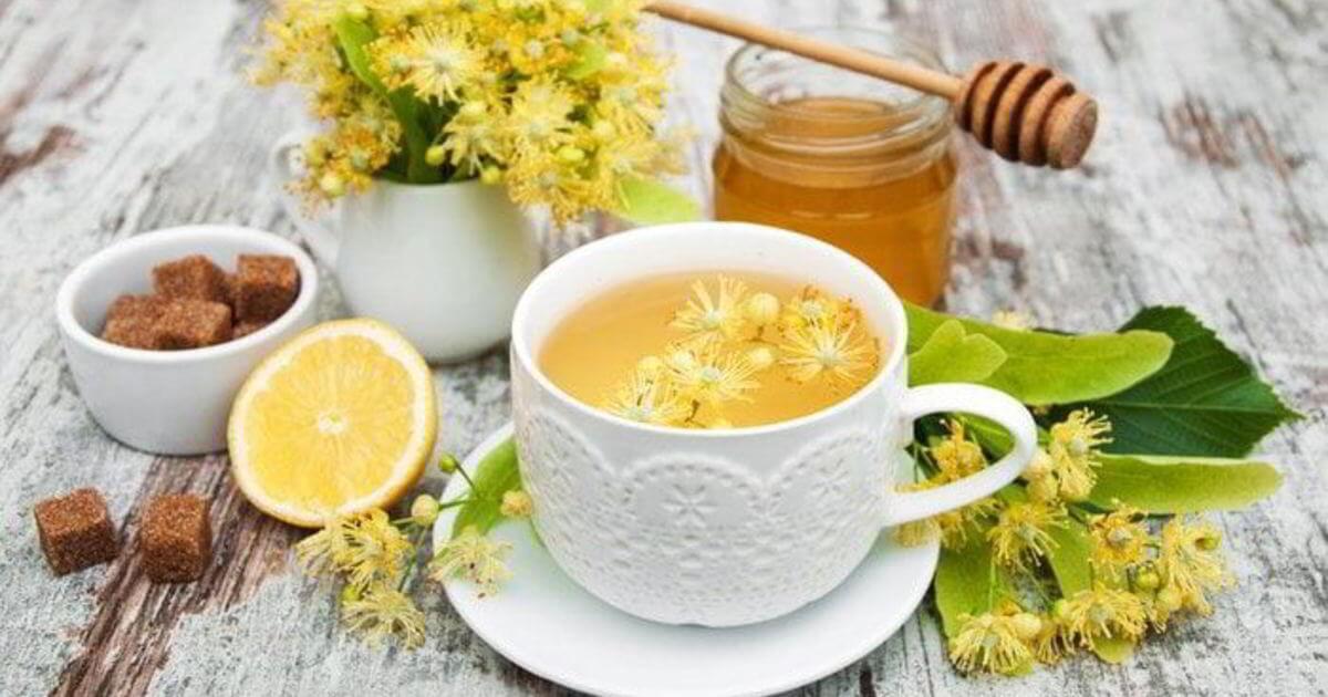 Чай с липой: полезные свойства